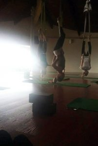 I love to be upside down! - GGA